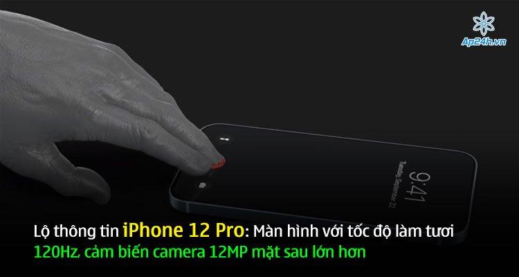 Lộ thông tin iPhone 12 Pro: Màn hình với tốc độ làm tươi 120Hz, cảm biến camera 12MP mặt sau lớn hơn