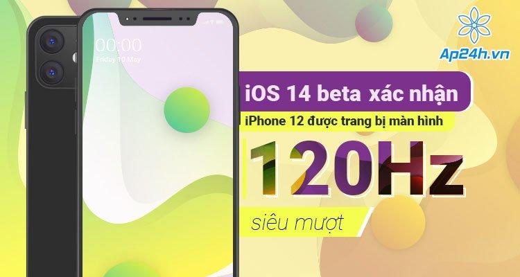 iOS 14 beta xác nhận iPhone 12 được trang bị màn hình 120Hz siêu mượt