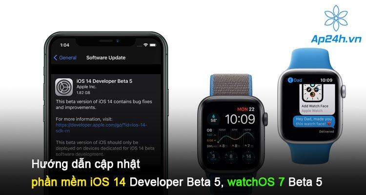 Hướng dẫn cập nhật phần mềm iOS 14 Developer Beta 5, watchOS 7 Beta 5