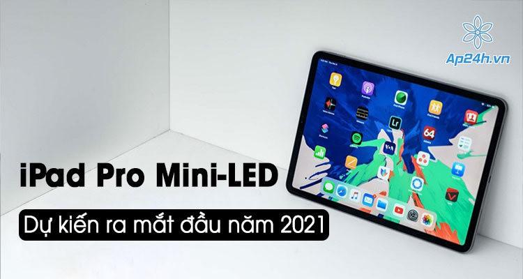 Người dùng chào đón iPad Pro màn hình mini-LED vào Quý 1 năm 2021