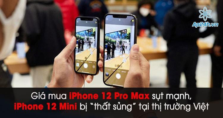 """Giá mua iPhone 12 Pro Max sụt mạnh, iPhone 12 Mini bị """"thất sủng"""" ở thị trường Việt"""