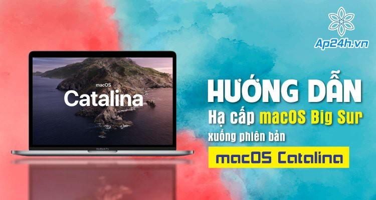 Hướng dẫn hạ cấp macOS Big Sur xuống macOS Catalina chính xác nhất