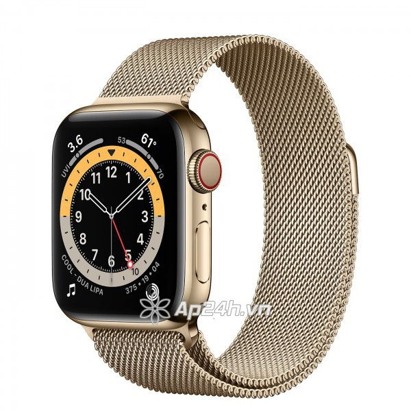 Apple Watch Series 6 GPS + Cellular 40mm M06W3VN/A Gold Stainless Steel Case with Gold Milanese Loop (Apple VN)
