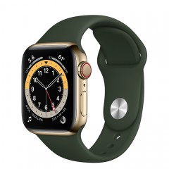 Apple Watch Series 6 GPS + Cellular 40mm M06V3VN/A Gold Stainless Steel Case with Cyprus Green Sport Band (Apple VN)